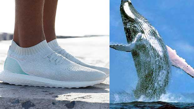 online retailer d7d8c 47520 Help Clean the Earth by Buying These Adidas Shoes Made From Recycled Ocean  Plastic - Your Daily Dish
